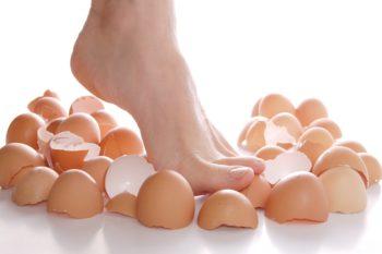 eggshelf